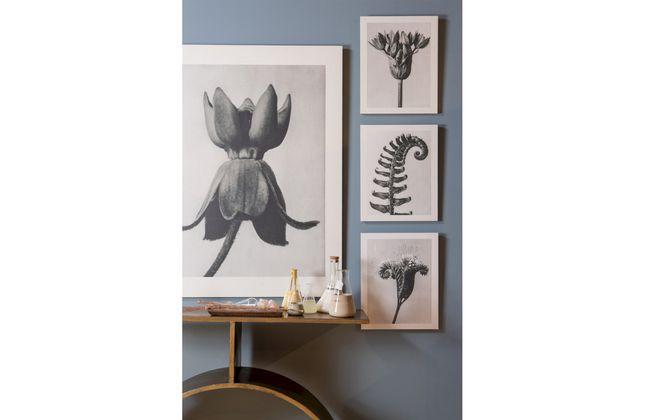 BePureHome Artwork Plantstudie Schilderij