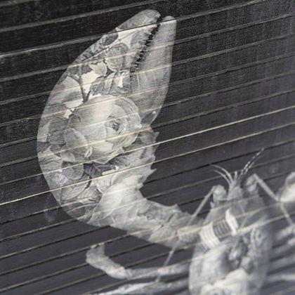 By Boo Morita Lobster Wanddecoratie