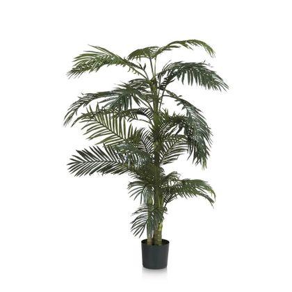 COCO maison Areca Plant