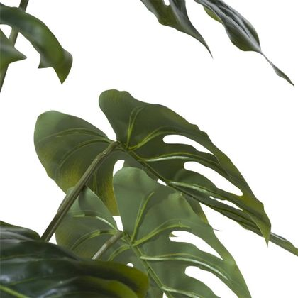 COCO maison Monstera Plant