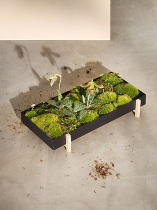 Design House Stockholm Flower Tray