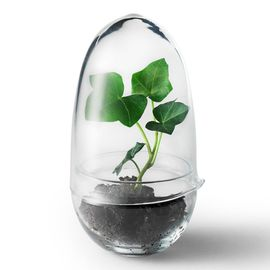 Design House Stockholm Grow Greenhouse Kas