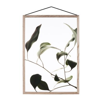 Moebe Floating Leaves 09 Poster