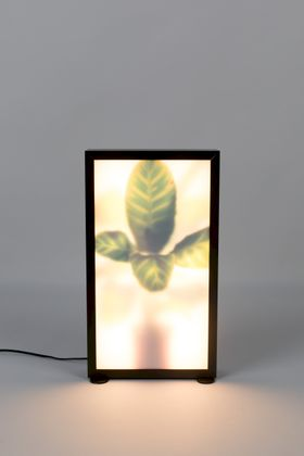 Zuiver Grow M Vloerlamp